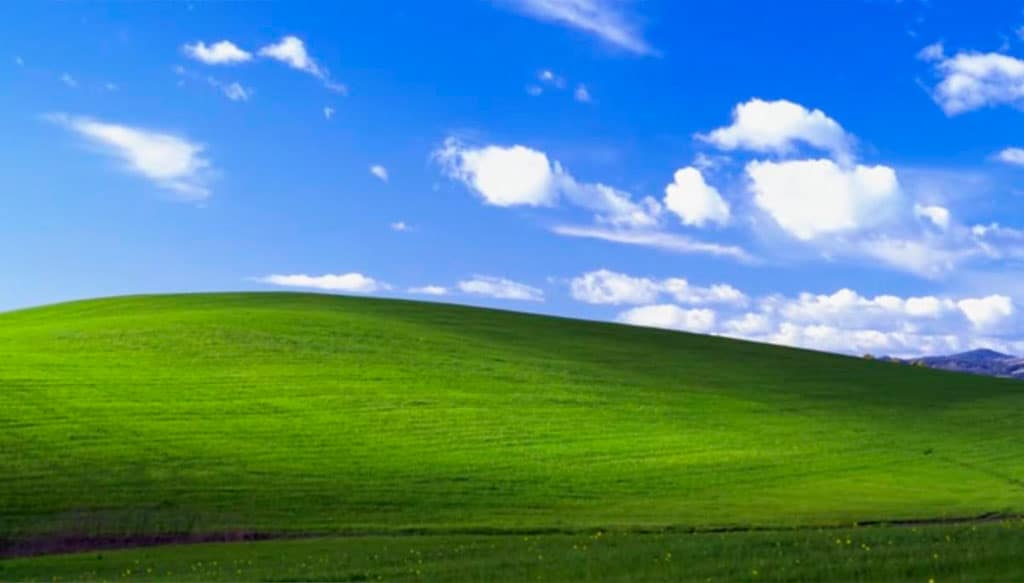 A historia por detrás do famoso fundo de ecrã do Windows XP